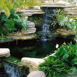 bagaimana merencanakan kolam hias sebagai element pemanis